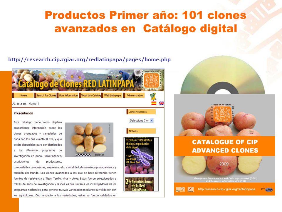 http://research.cip.cgiar.org/redlatinpapa/pages/home.php Productos Primer año: 101 clones avanzados en Catálogo digital