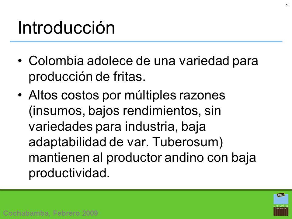 2 Introducción Colombia adolece de una variedad para producción de fritas.