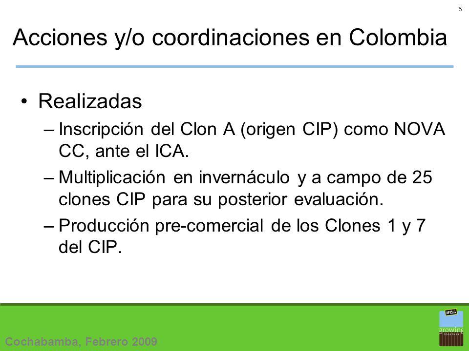 5 Acciones y/o coordinaciones en Colombia Realizadas –Inscripción del Clon A (origen CIP) como NOVA CC, ante el ICA.