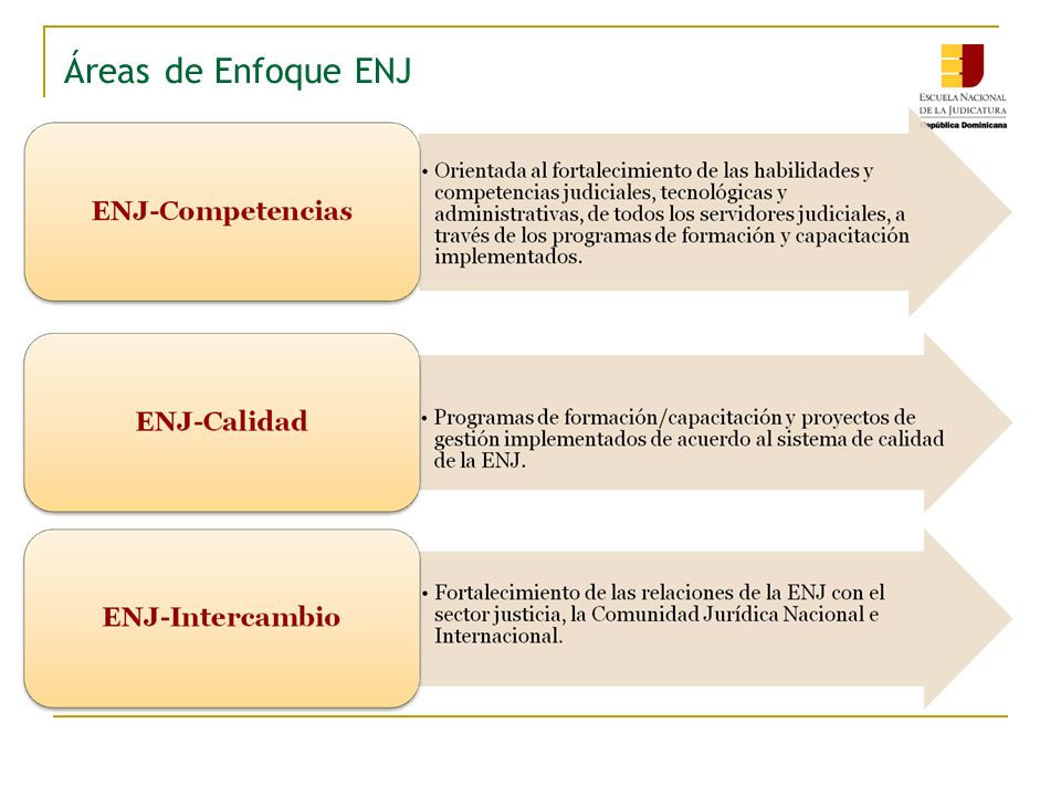 Áreas de Enfoque / Proyectos ENJ