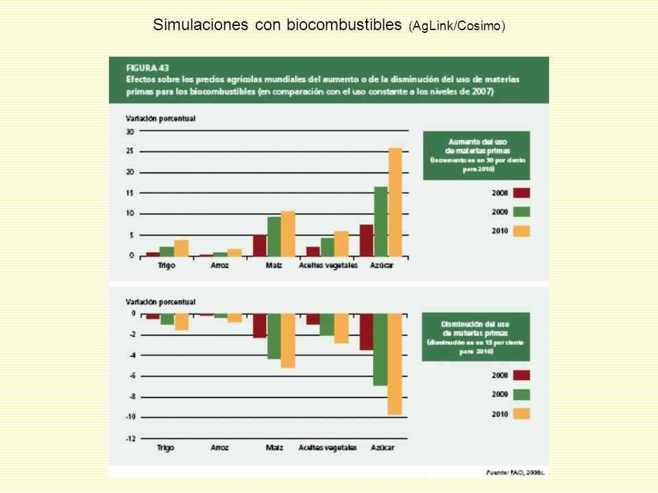 Simulaciones con biocombustibles (AgLink/Cosimo)