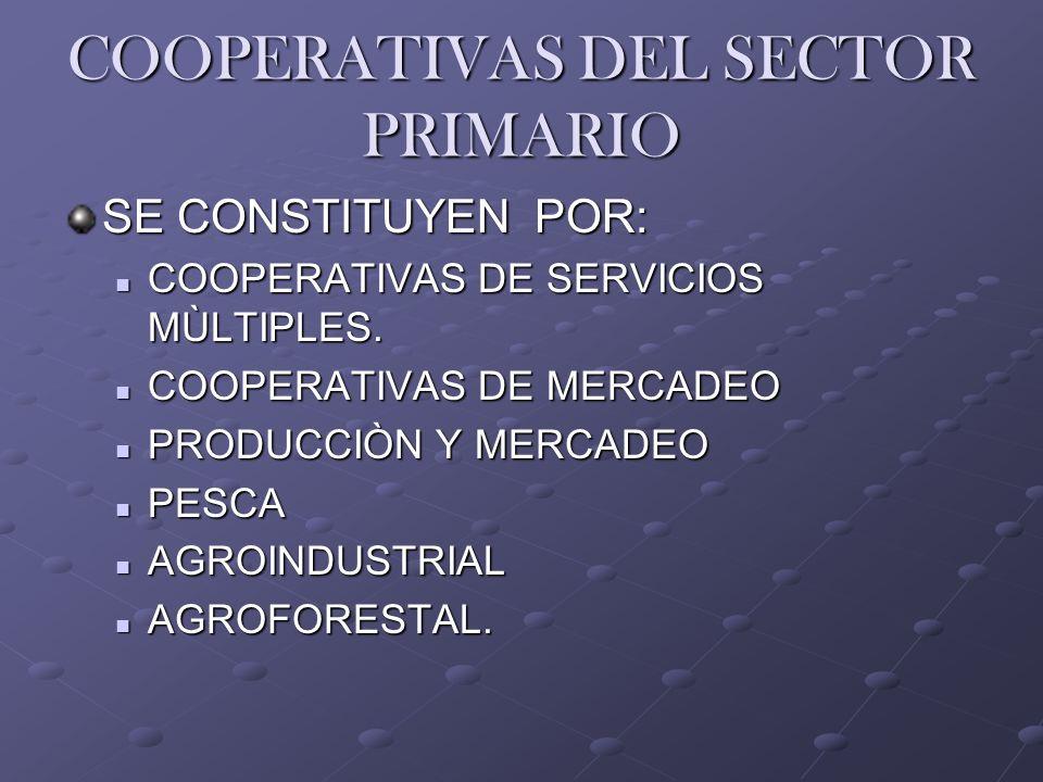COOPERATIVAS DEL SECTOR PRIMARIO SE CONSTITUYEN POR: COOPERATIVAS DE SERVICIOS MÙLTIPLES. COOPERATIVAS DE SERVICIOS MÙLTIPLES. COOPERATIVAS DE MERCADE