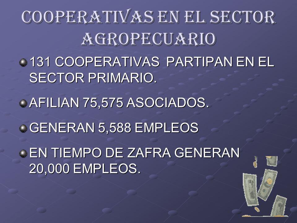 COOPERATIVAS EN EL SECTOR AGROPECUARIO 131 COOPERATIVAS PARTIPAN EN EL SECTOR PRIMARIO. AFILIAN 75,575 ASOCIADOS. GENERAN 5,588 EMPLEOS EN TIEMPO DE Z