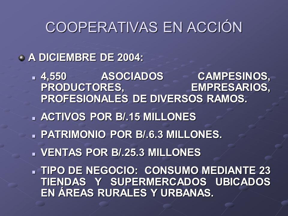 COOPERATIVAS EN ACCIÓN A DICIEMBRE DE 2004: 4,550 ASOCIADOS CAMPESINOS, PRODUCTORES, EMPRESARIOS, PROFESIONALES DE DIVERSOS RAMOS. 4,550 ASOCIADOS CAM
