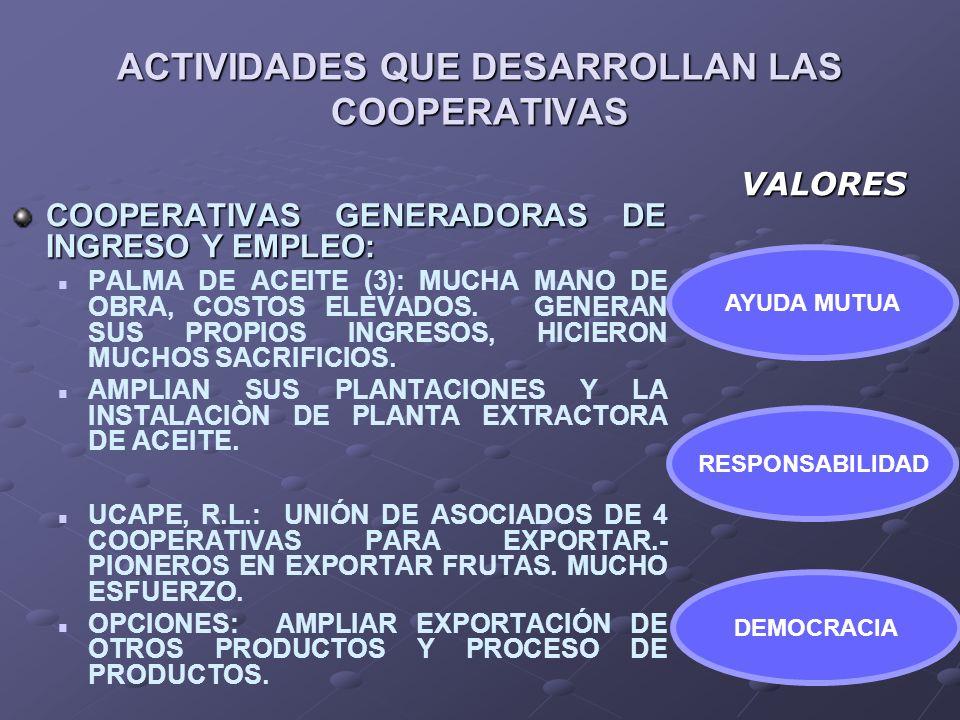 ACTIVIDADES QUE DESARROLLAN LAS COOPERATIVAS COOPERATIVAS GENERADORAS DE INGRESO Y EMPLEO: PALMA DE ACEITE (3): MUCHA MANO DE OBRA, COSTOS ELEVADOS. G