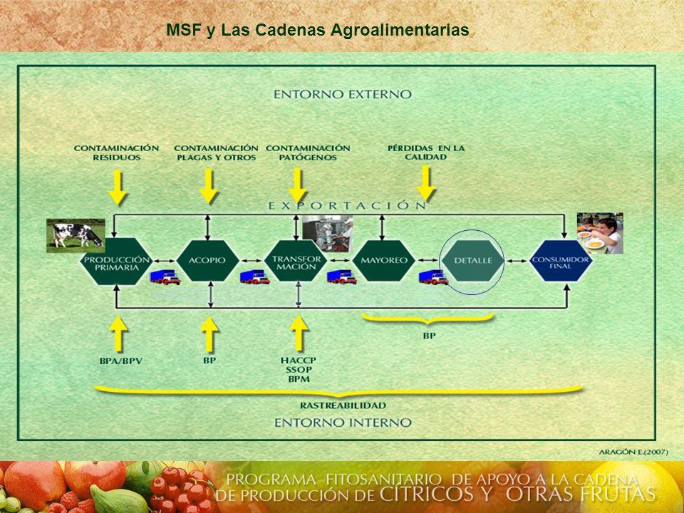 MSF y Las Cadenas Agroalimentarias