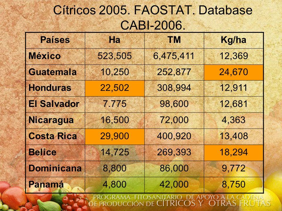 Cítricos 2005. FAOSTAT. Database CABI-2006. PaísesHaTMKg/ha México523,5056,475,41112,369 Guatemala10,250252,87724,670 Honduras22,502308,99412,911 El S