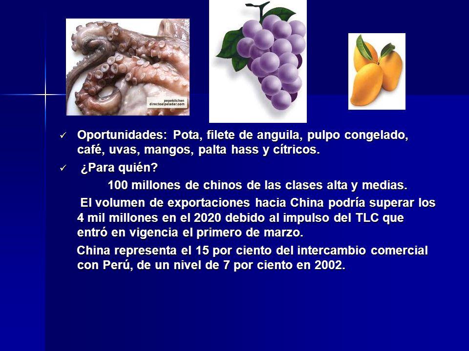 Oportunidades: Pota, filete de anguila, pulpo congelado, café, uvas, mangos, palta hass y cítricos. Oportunidades: Pota, filete de anguila, pulpo cong