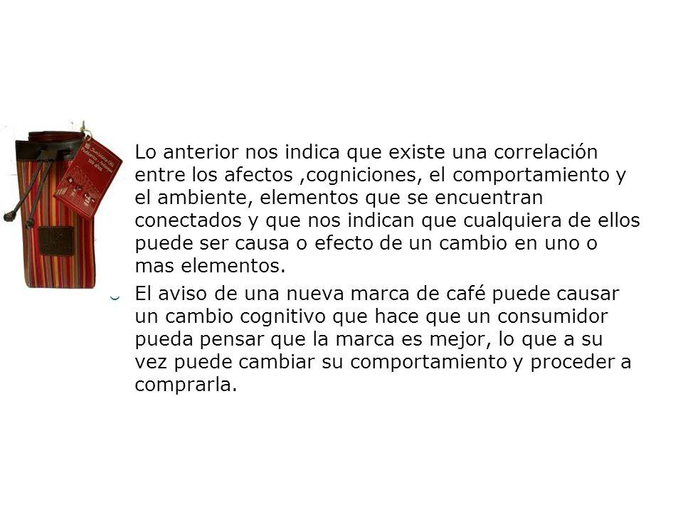 Lo anterior nos indica que existe una correlación entre los afectos,cogniciones, el comportamiento y el ambiente, elementos que se encuentran conectad