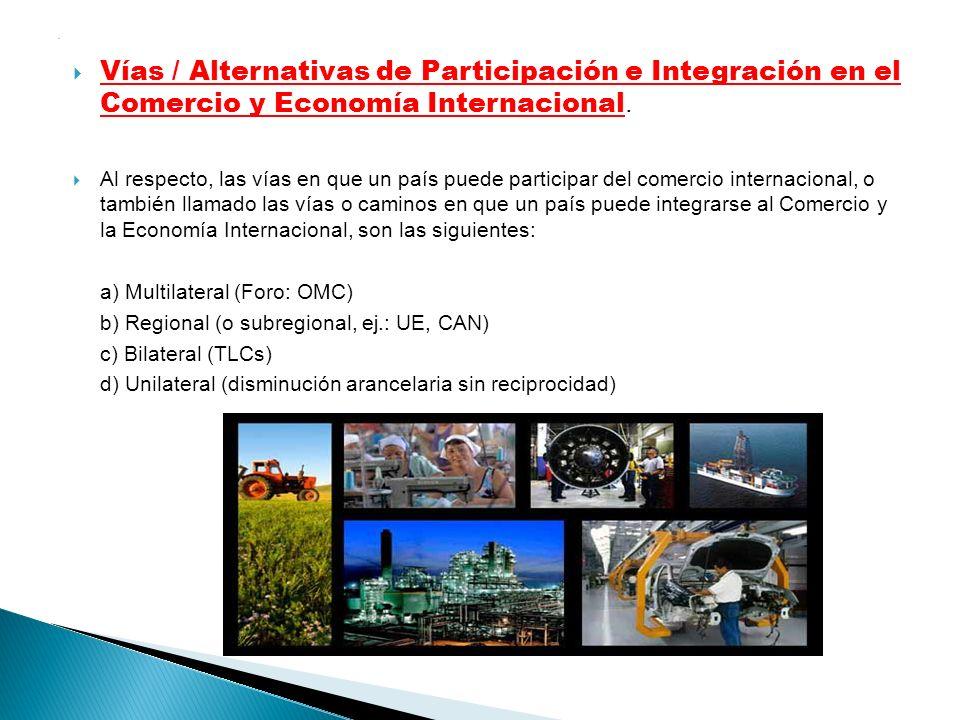 . Vías / Alternativas de Participación e Integración en el Comercio y Economía Internacional. Al respecto, las vías en que un país puede participar de