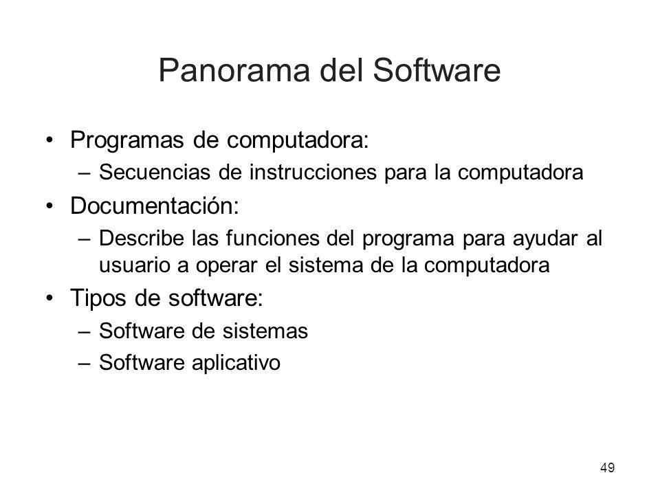 Panorama del Software Programas de computadora: –Secuencias de instrucciones para la computadora Documentación: –Describe las funciones del programa p