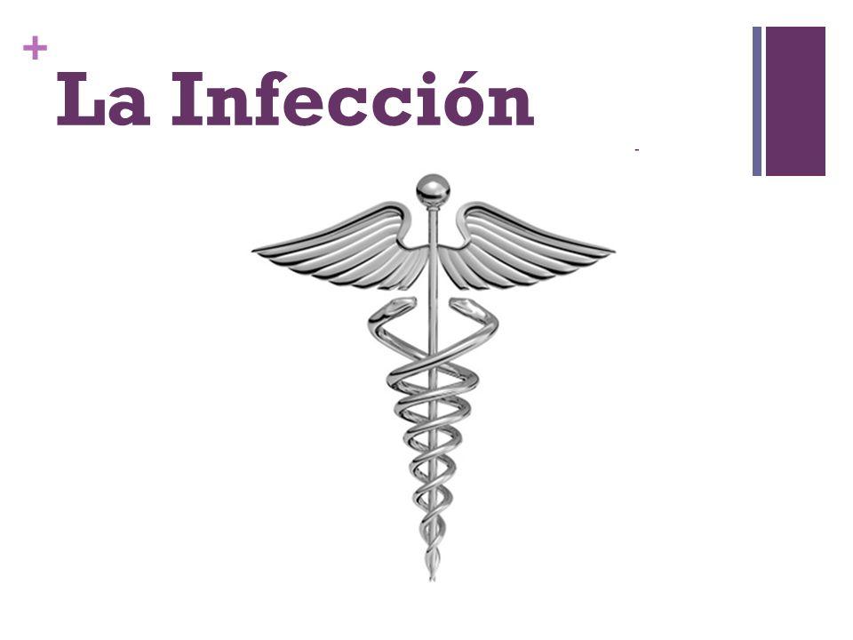 + La Infección