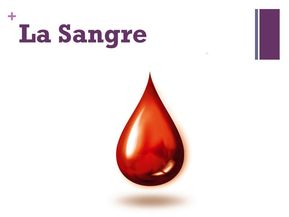+ La Sangre