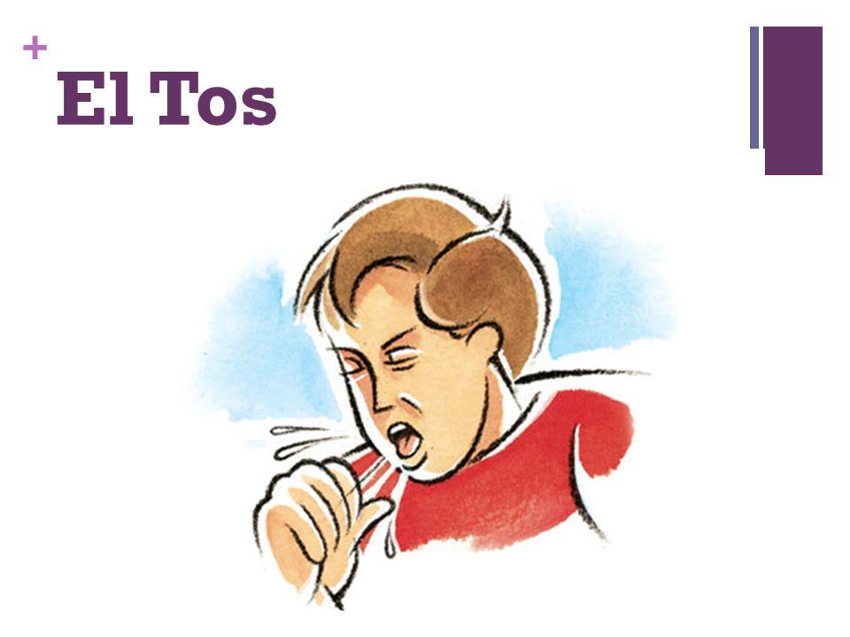 + El Tos