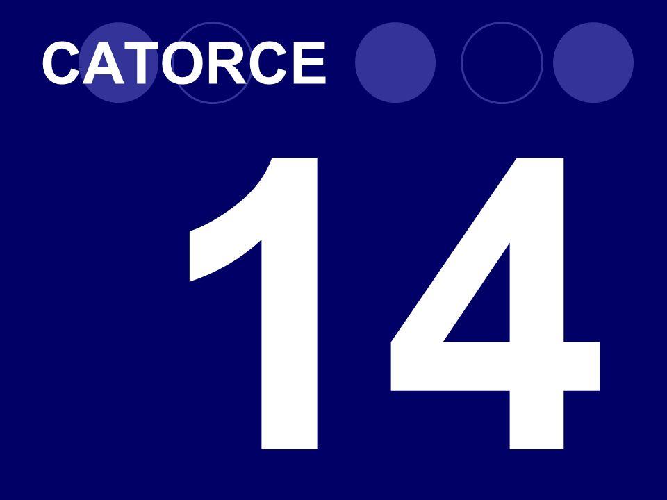 CATORCE 14