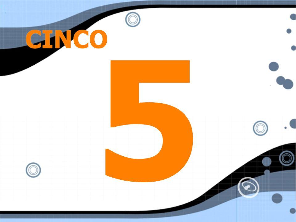 CINCO 55