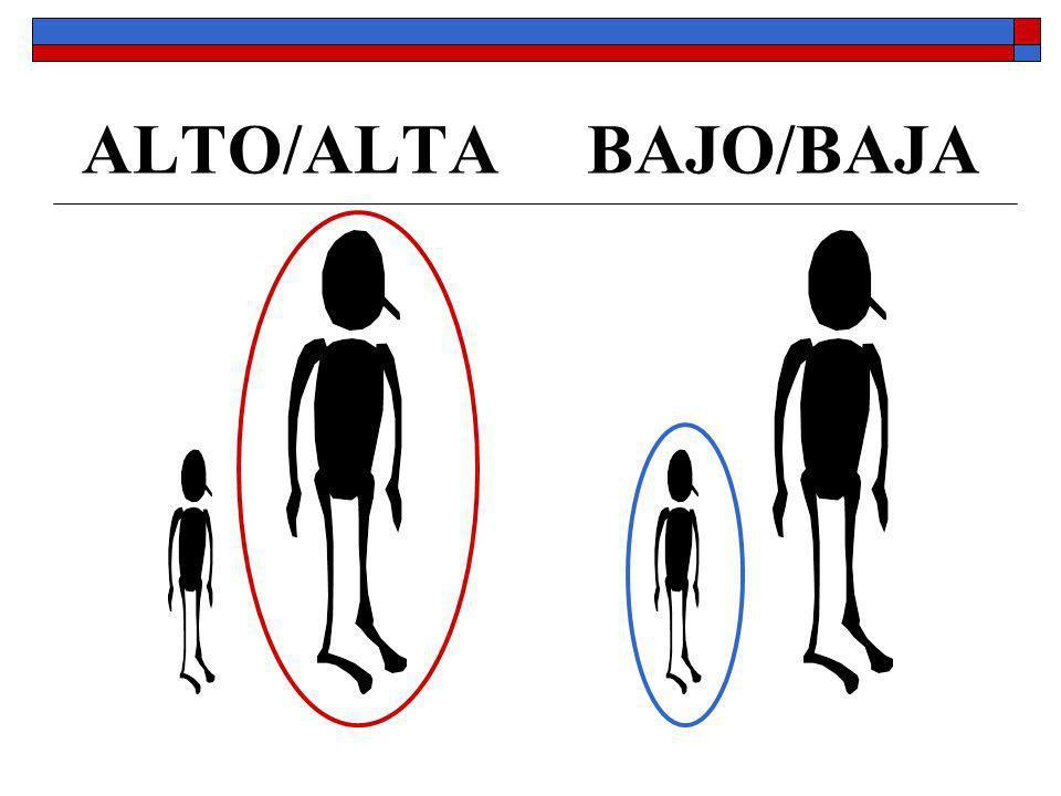 ALTO/ALTA BAJO/BAJA