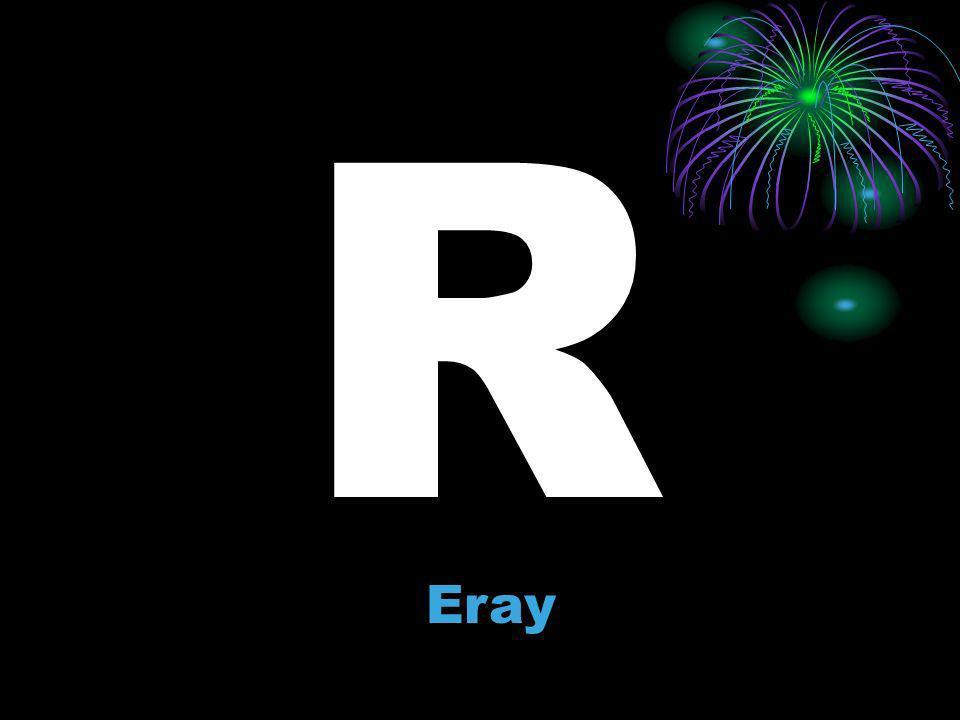 R Eray