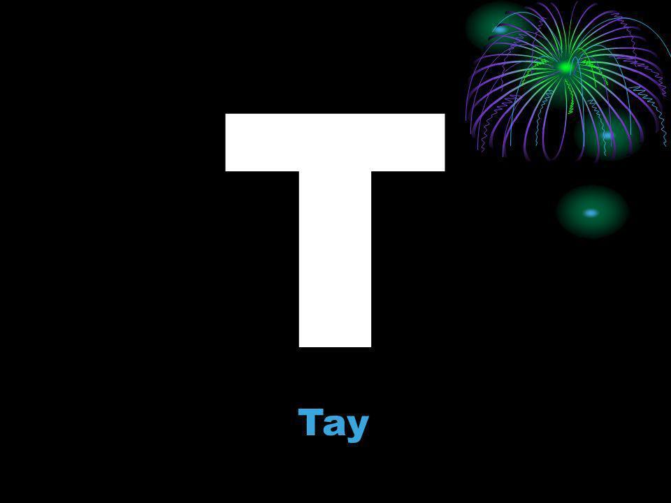 T Tay