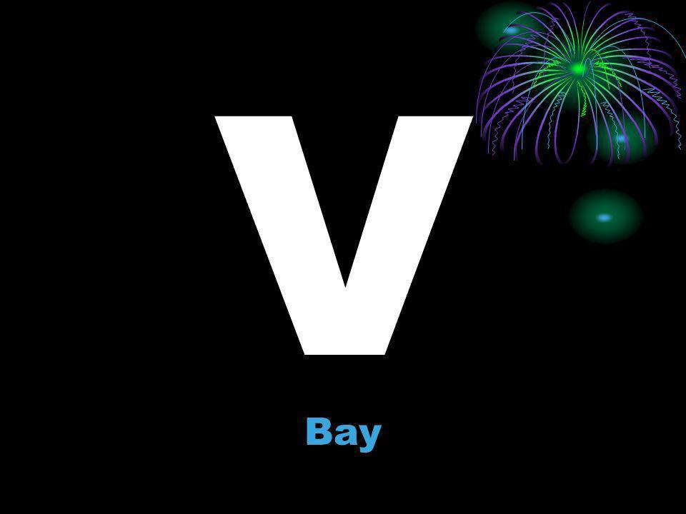 V Bay