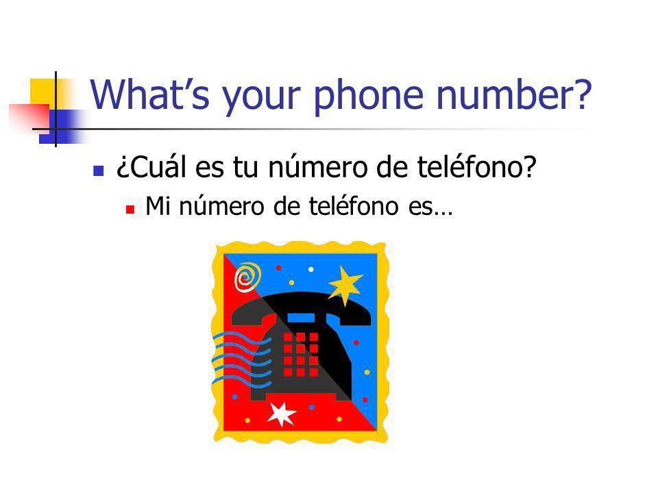 Whats your phone number? ¿Cuál es tu número de teléfono? Mi número de teléfono es…