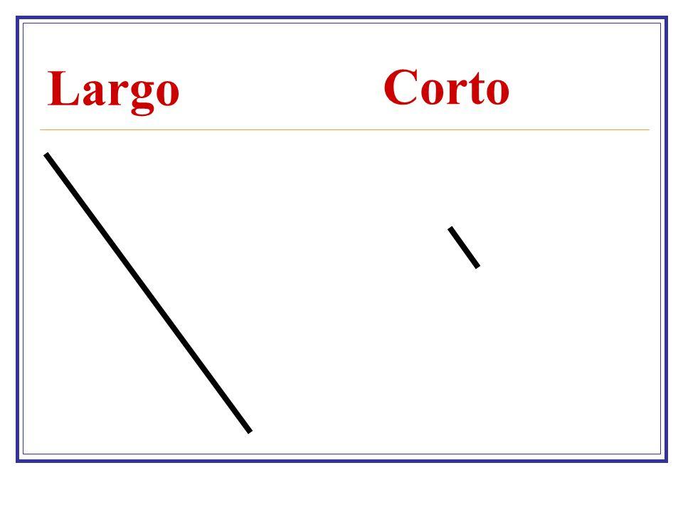 Largo Corto