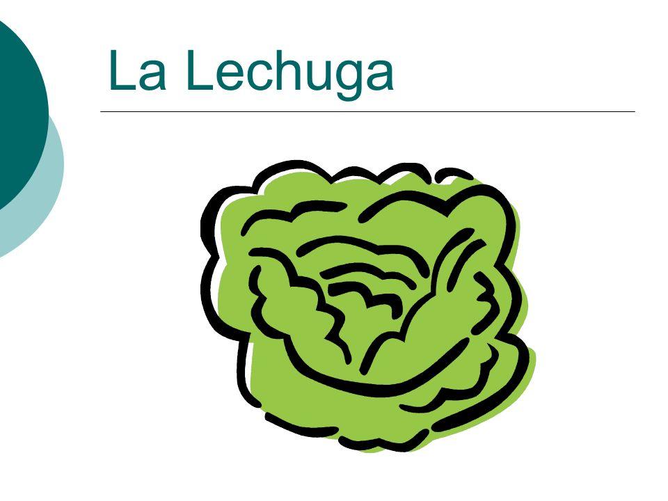 La Lechuga