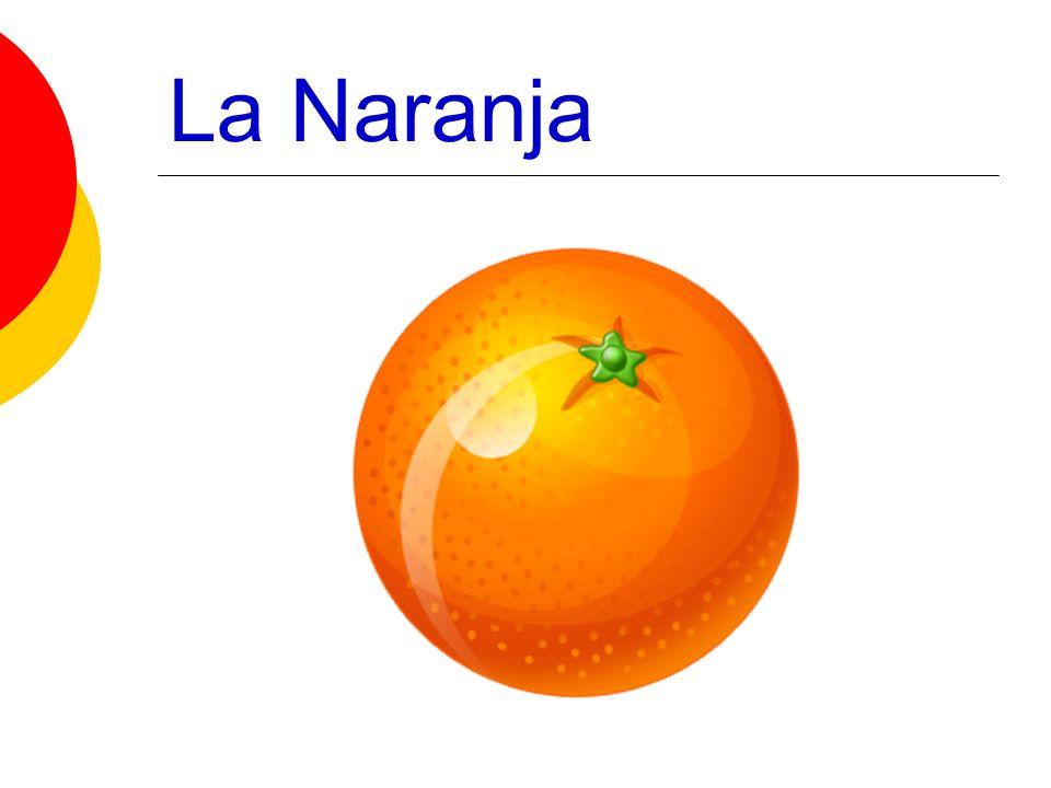 ACTIVIDAD ¿Cuál es tu fruta favorita.Mi fruta favorita es… ¿Cuál es tu verdura favorita.