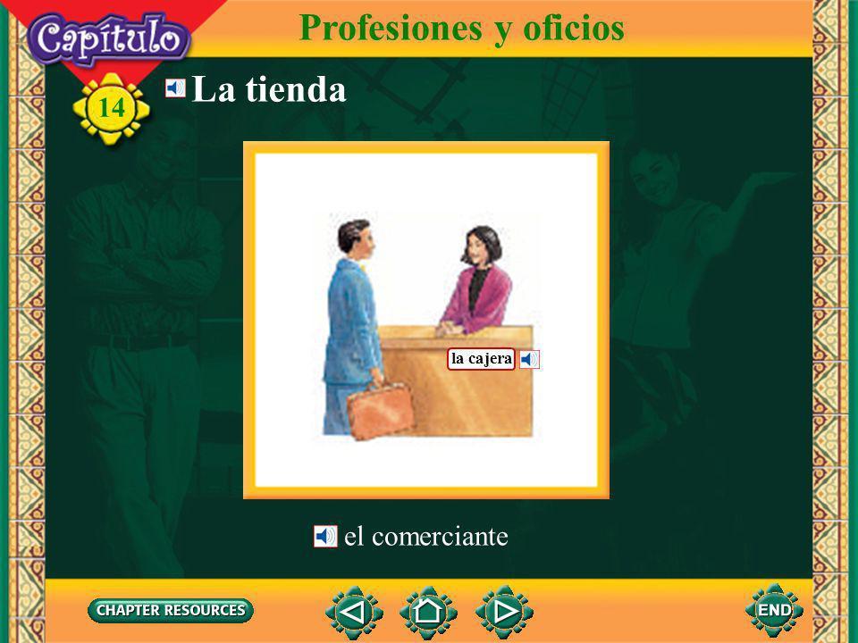 14 La oficina Profesiones y oficios la programadora de informática el gerente