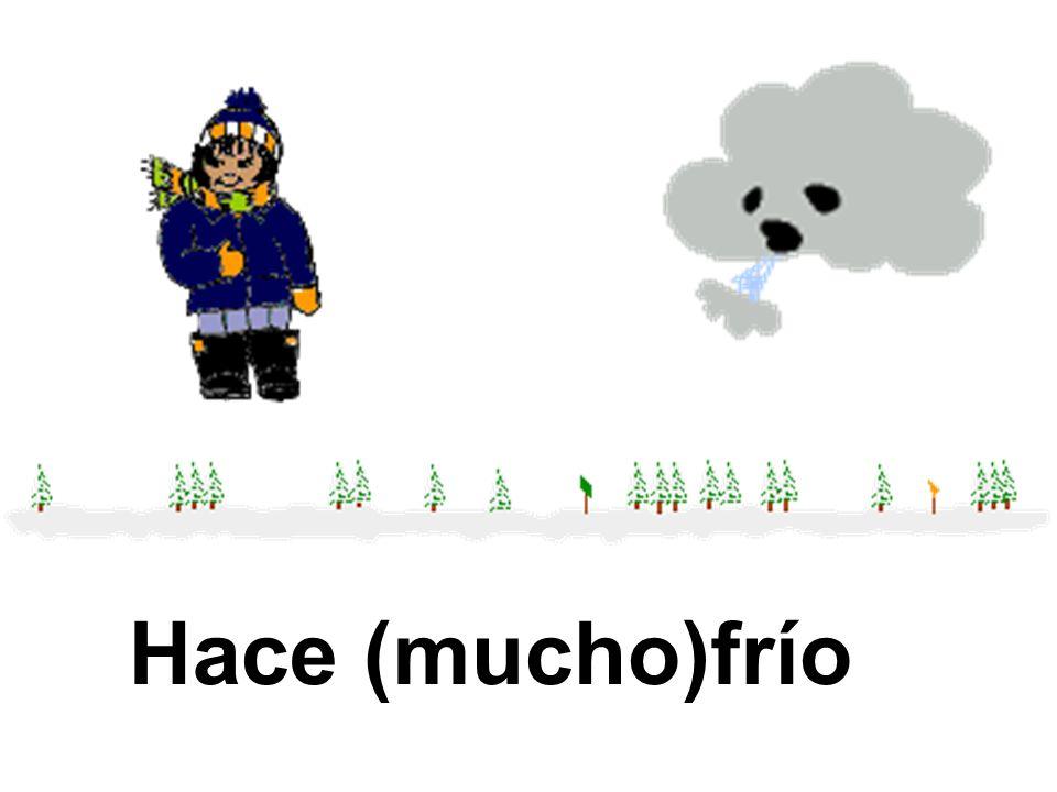 Los meses son: marzo, abril, y mayo. En la primavera, Hace viento y llueve