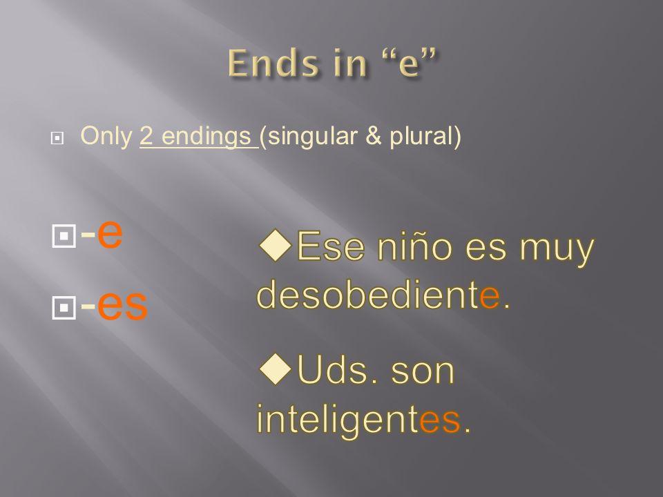 Only 2 endings (singular & plural) -e -es