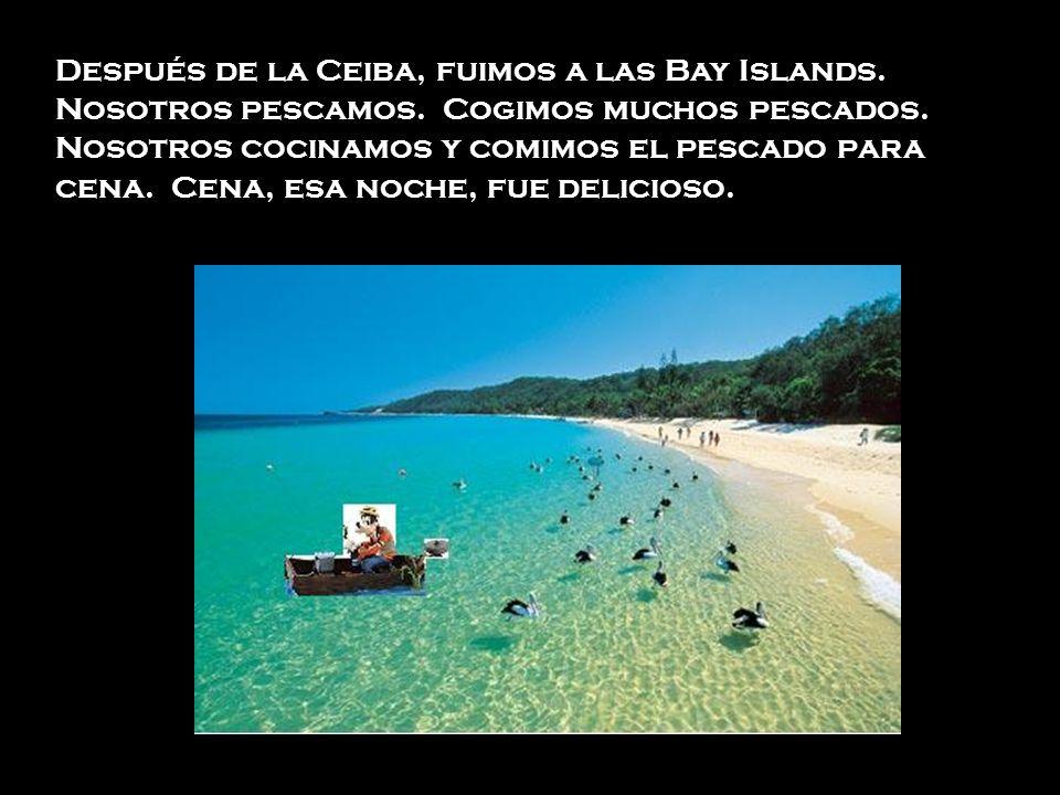 Después de la Ceiba, fuimos a las Bay Islands. Nosotros pescamos. Cogimos muchos pescados. Nosotros cocinamos y comimos el pescado para cena. Cena, es