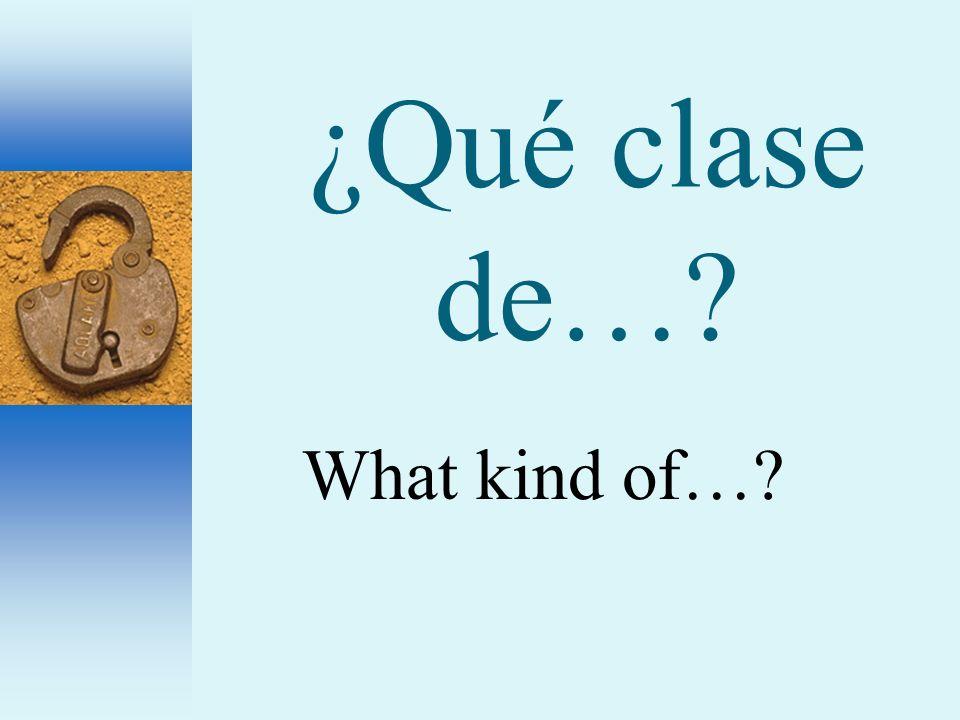 ¿Qué clase de…? What kind of…?