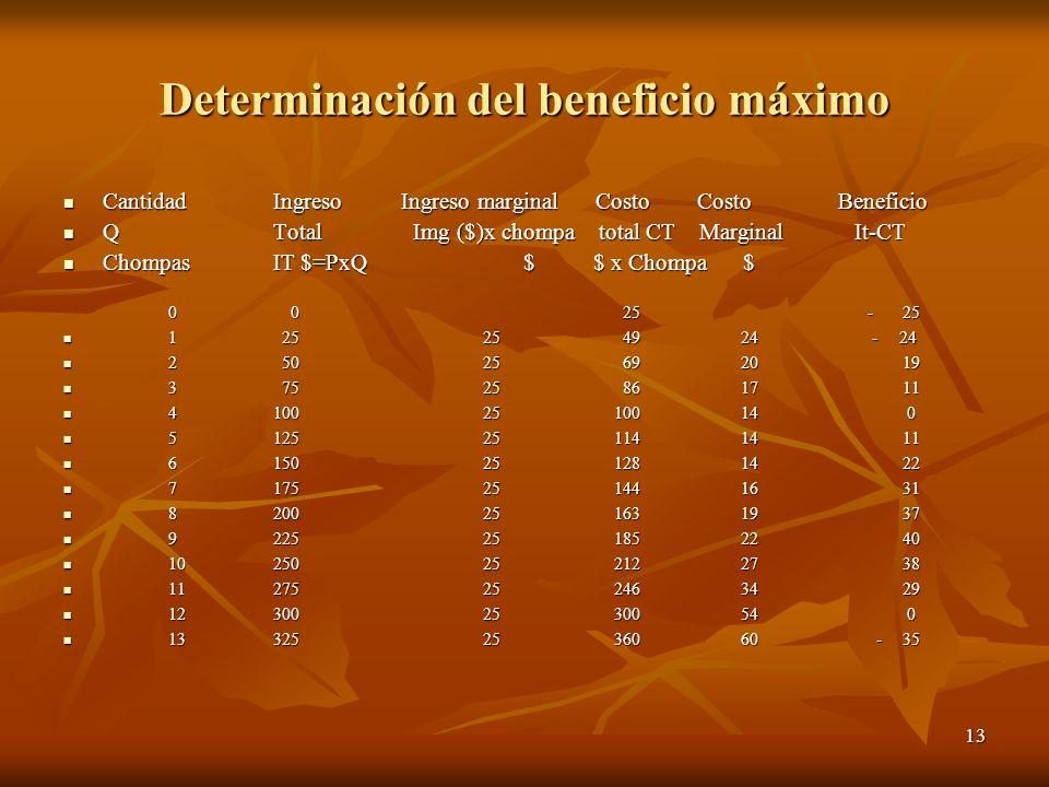 13 Determinación del beneficio máximo CantidadIngreso Ingreso marginal Costo Costo Beneficio CantidadIngreso Ingreso marginal Costo Costo Beneficio QT