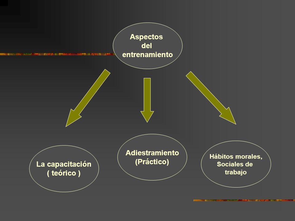 Aspectos del entrenamiento Adiestramiento (Práctico) La capacitación ( teórico ) Hábitos morales, Sociales de trabajo
