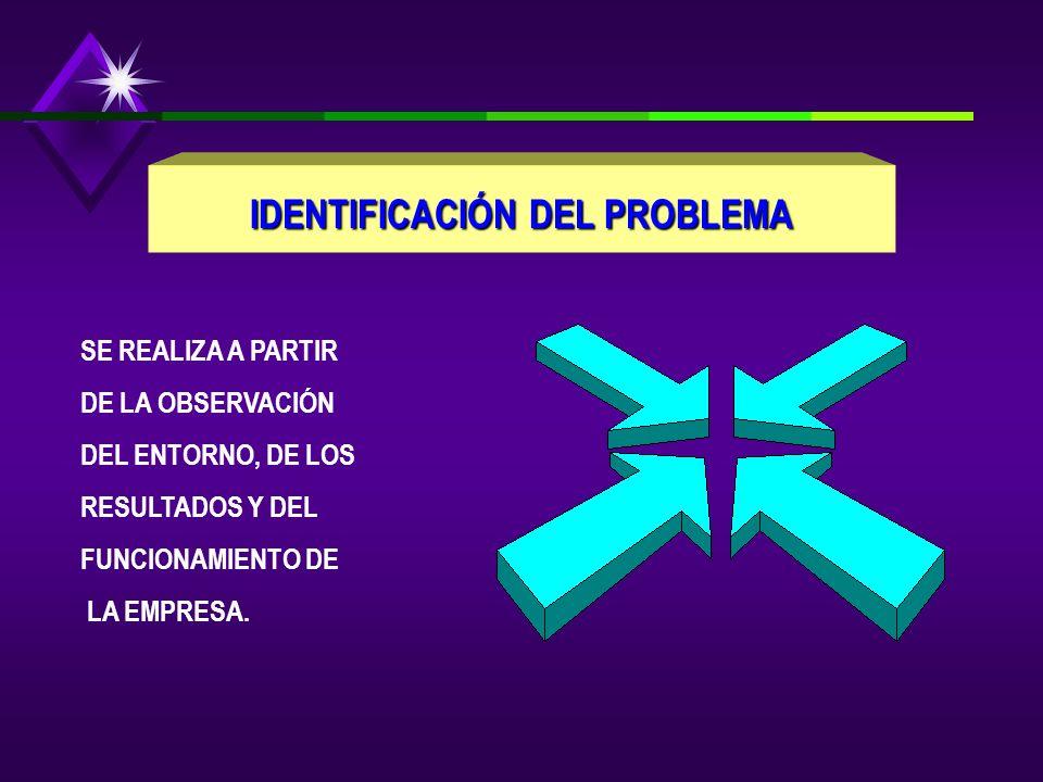 IDENTIFICACIÓN DEL PROBLEMA SE REALIZA A PARTIR DE LA OBSERVACIÓN DEL ENTORNO, DE LOS RESULTADOS Y DEL FUNCIONAMIENTO DE LA EMPRESA.