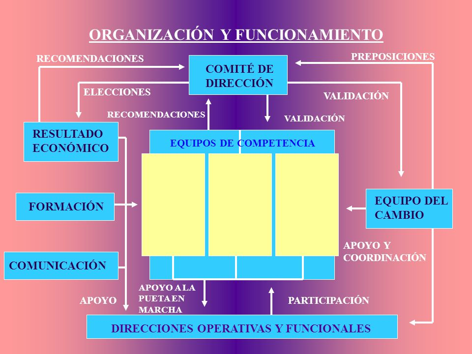 ORGANIZACIÓN Y FUNCIONAMIENTO COMITÉ DE DIRECCIÓN EQUIPO DEL CAMBIO RESULTADO ECONÓMICO FORMACIÓN COMUNICACIÓN DIRECCIONES OPERATIVAS Y FUNCIONALES RECOMENDACIONES ELECCIONES APOYO EQUIPOS DE COMPETENCIA RECOMENDACIONES PREPOSICIONES VALIDACIÓN APOYO Y COORDINACIÓN PARTICIPACIÓN APOYO A LA PUETA EN MARCHA