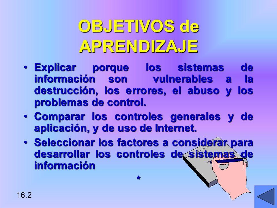 16.2 OBJETIVOS de APRENDIZAJE Explicar porque los sistemas de información son vulnerables a la destrucción, los errores, el abuso y los problemas de control.Explicar porque los sistemas de información son vulnerables a la destrucción, los errores, el abuso y los problemas de control.