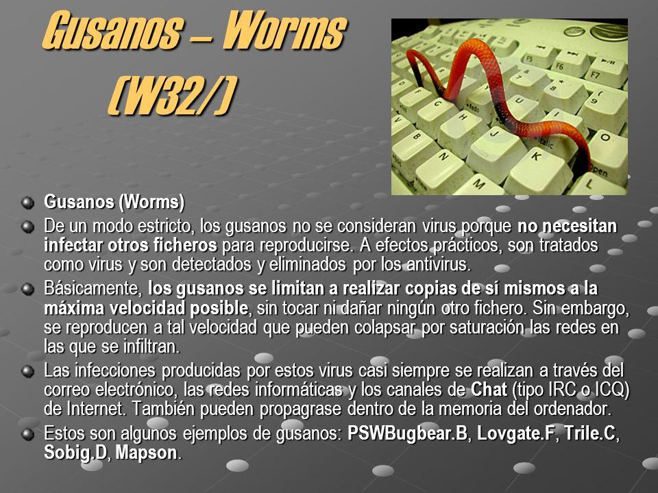 Gusanos – Worms (W32/) Gusanos (Worms) De un modo estricto, los gusanos no se consideran virus porque no necesitan infectar otros ficheros para reproducirse.