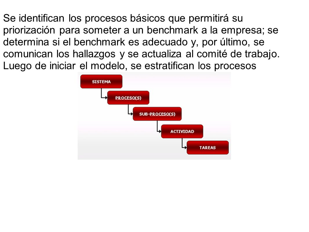 Se identifican los procesos básicos que permitirá su priorización para someter a un benchmark a la empresa; se determina si el benchmark es adecuado y