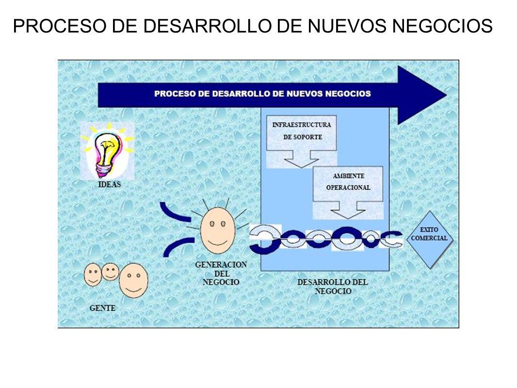 PROCESO DE DESARROLLO DE NUEVOS NEGOCIOS