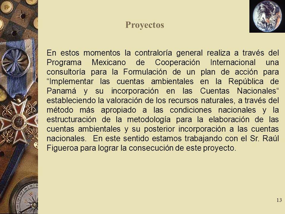 13 En estos momentos la contraloría general realiza a través del Programa Mexicano de Cooperación Internacional una consultoría para la Formulación de