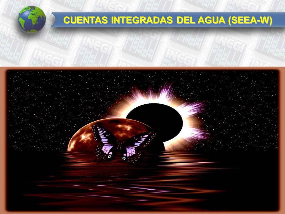 CUENTAS INTEGRADAS DEL AGUA (SEEA-W)