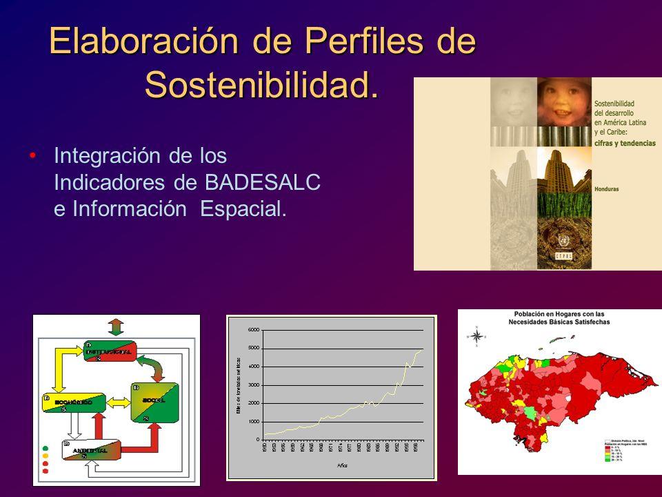 Elaboración de Perfiles de Sostenibilidad. Integración de los Indicadores de BADESALC e Información Espacial.