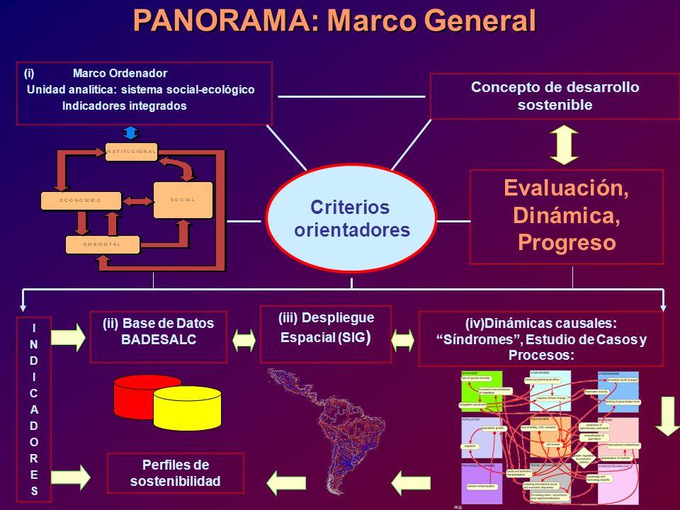 PANORAMA: Marco General Concepto de desarrollo sostenible (i)Marco Ordenador Unidad analítica: sistema social-ecológico Indicadores integrados (iv)Din