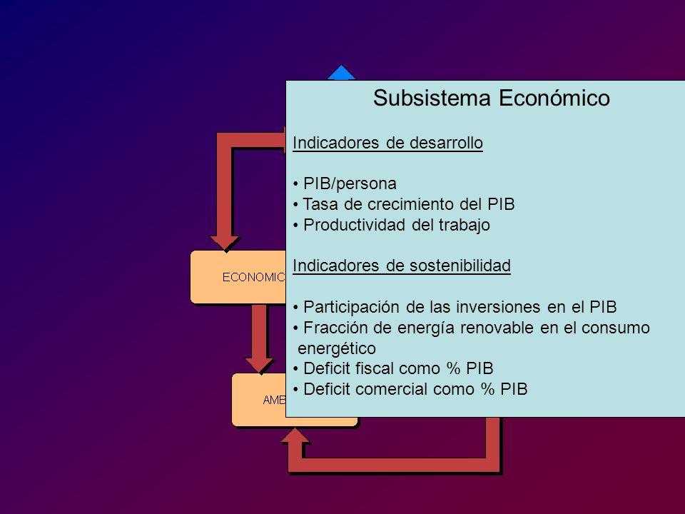 Subsistema Económico Indicadores de desarrollo PIB/persona Tasa de crecimiento del PIB Productividad del trabajo Indicadores de sostenibilidad Partici