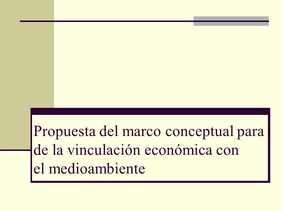Propuesta del marco conceptual para de la vinculación económica con el medioambiente