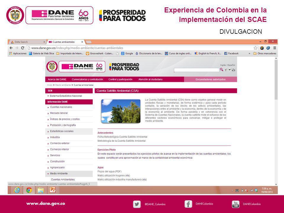 Experiencia de Colombia en la implementación del SCAE APOYO EN LA IMPLEMENTACION Lecciones Aprendidas Necesidad de socialización de RIEA y el SCAE-W Estrecha cooperación interinstitucional.