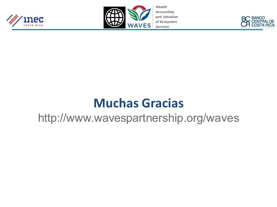 Muchas Gracias http://www.wavespartnership.org/waves