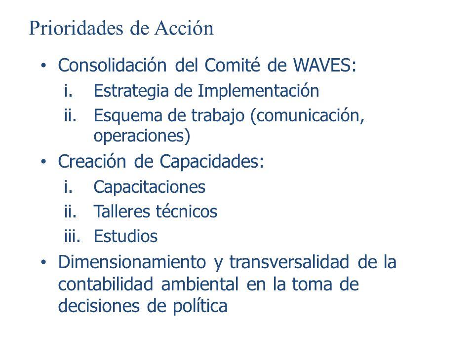 Prioridades de Acción Consolidación del Comité de WAVES: i.Estrategia de Implementación ii.Esquema de trabajo (comunicación, operaciones) Creación de
